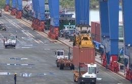 Thay đổi biểu thuế xuất nhập khẩu của nhiều dòng hàng
