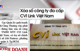 Xóa sổ Công ty đa cấp CVI Link Việt Nam