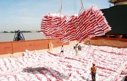 """Bộ Công Thương phủ nhận thông tin """"20.000 USD một giấy phép xuất khẩu gạo"""""""