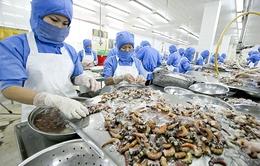 Xuất khẩu thủy sản không bị ảnh hưởng bởi việc EU rút thẻ vàng