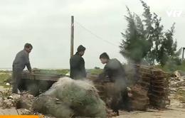Cảnh báo tình trạng lừa đảo xuất khẩu lao động ở Quảng Bình