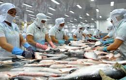 Xuất khẩu cá tra sẽ cán mốc 1,8 tỷ USD