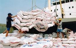 Đưa gạo Việt Nam vào thị trường Singapore