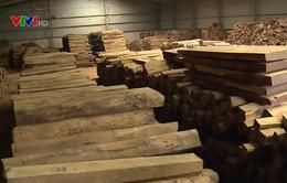 Công ước CITES làm khó doanh nghiệp xuất khẩu gỗ
