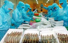 Xuất khẩu tôm tăng tốc để cán mốc 3,4 tỷ USD