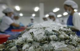 Việt Nam là nguồn cung tôm lớn nhất cho Australia