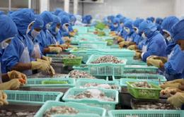 VASEP bức xúc trước lệnh cấm nhập khẩu thủy hải sản Việt Nam của Saudi Arabia
