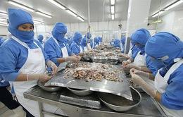 Xuất khẩu tôm sang Nhật Bản tăng đột biến