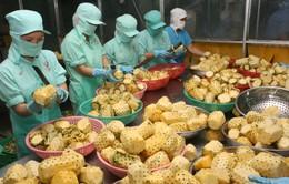 Xuất khẩu nông sản hướng tới đạt mục tiêu tăng trưởng 3,05%