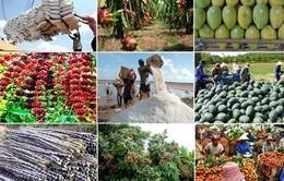 Nông sản Việt Nam dần khẳng định vị thế