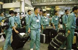 """Xuất khẩu lao động: Nhân lực chất lượng cao """"lên ngôi"""""""
