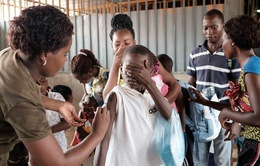 Vĩnh Long chủ động phòng chống bệnh sốt vàng cho khách du lịch