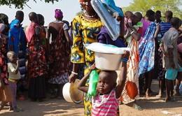 Boko Haram tấn công và bắt cóc thêm nhiều người tại Niger