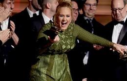 Nhờ Adele, lễ trao giải Grammy có tỷ suất người xem tăng vọt
