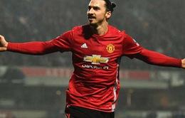 Ibrahimovic báo tin nóng, CĐV Man Utd khấp khởi mừng thầm