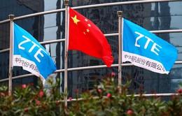 Trung Quốc phản đối Mỹ phạt tập đoàn ZTE 1 tỷ USD