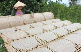Quảng Bình: Làng nghề bánh tráng Tân An sôi nổi vụ Tết