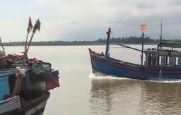 Quảng Trị: Kỳ vọng từ những chuyến biển đầu năm mới