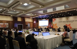Việt Nam dự cuộc họp quan chức cao cấp ASEAN - Ấn Độ