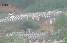 Thanh tra toàn diện dự án nghĩa trang Hòa Sơn, Đà Nẵng