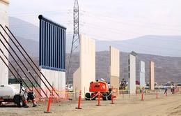 Mỹ đẩy nhanh xây dựng bức tường biên giới với Mexico