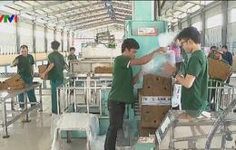 Khánh thành nhà máy chế biến mủ cao su tại Campuchia