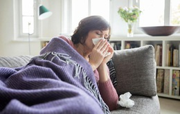 Dịch cúm mùa lan rộng tại Nhật Bản