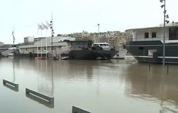 Khách du lịch vẫn tìm tới Paris trong cảnh ngập lụt