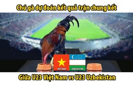 """Chung kết U23 châu Á 2018: Gà """"tiên tri"""" dự đoán Việt Nam vô địch"""