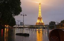 Mực nước sông Seine ở Paris, Pháp sẽ dâng lên đến 6m
