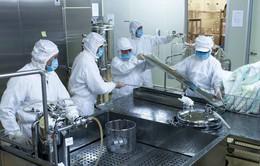 Vaccine sởi - rubella của Việt Nam sẽ được đưa vào chương trình tiêm chủng mở rộng