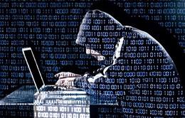 Tin tặc tấn công 3 ngân hàng hàng đầu Hà Lan