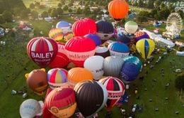 70 phi công tham gia Lễ hội khinh khí cầu quốc tế