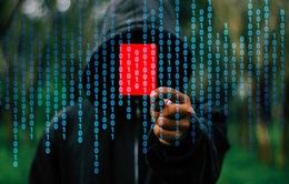 Cảng Sài Gòn vẫn chưa khắc phục được sự cố nhiễm mã độc WannaCry