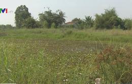 Long An: Kênh dẫn nước bị san lấp, hoạt động sản xuất bị đảo lộn