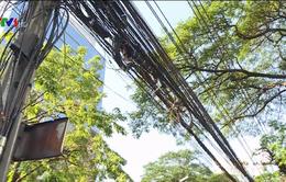 """Bangkok tuyên chiến với """"mạng nhện"""" dây điện"""