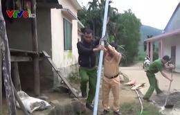 Quảng Ngãi: Đem điện về cho người dân vùng cao đón Tết