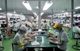 Gần 70% lao động ngành điện tử chưa có bằng cấp, chứng chỉ