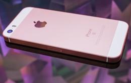 iPhone SE 2 có thể ra mắt ngay trong tháng 5