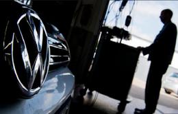 Đưa khỉ vào thí nghiệm khí thải độc hại, Volkswagen vướng bê bối chấn động