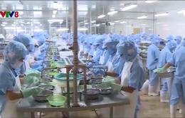 Hà Tĩnh: Thủy sản đạt 30.000 tấn, trị giá hơn 1.500 tỷ đồng