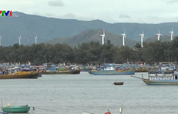 Việt Nam tham gia chương trình Carbon thấp