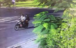 Bắt nhóm cướp tiệm vàng ở Phú Yên