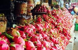 Thanh long rớt giá, giá tại siêu thị và các chợ vẫn cao