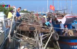 Nhiều bất cập ở các khu tránh trú bão cho tàu cá