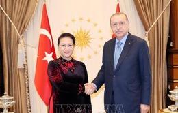 Chủ tịch Quốc hội tiếp kiến Tổng thống Thổ Nhĩ Kỳ