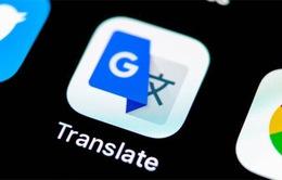 Google Translate đã hỗ trợ dịch tiếng Việt qua camera