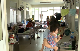 Đà Nẵng tăng cường các biện pháp phòng dịch sốt xuất huyết