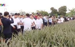 Việt Nam chia sẻ kinh nghiệm xây dựng, phát triển nông thôn