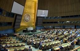Liên Hợp Quốc bầu Hội đồng nhân quyền